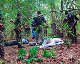 Ammonium nitrate used in Chhattisgarh Naxal attack